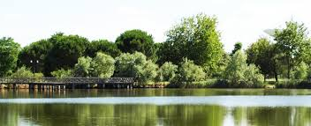 Lago del Gelso
